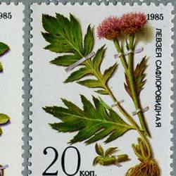 ソ連 1985年シベリアの薬草5種