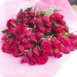 還暦のお祝いに最高級の赤の国産ばらの花束60本