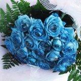 記念日にサプライズの贈り物青いばら20本の花束一部地域は送料無料