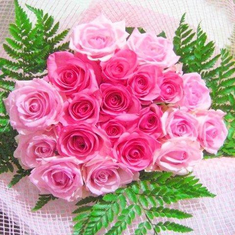 女性に人気ピンクの国産バラ20本の花束一部地域は送料無料期間限定特別価格