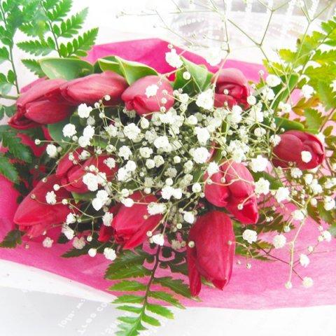 季節の花一種の花束チューリップ赤色10本一部地域送料無料
