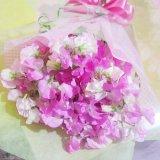 かわいいスイトピー20本の花束一部地域は送料無料