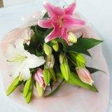 送料無料オリエンタル系大輪百合5輪つき白3本ピンク2本の豪華な花束