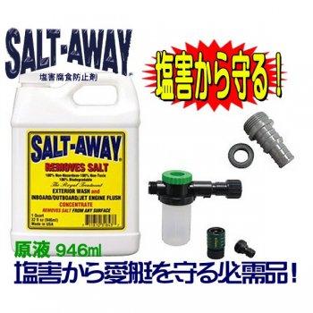 ソルトアウエイ 塩害腐食防止 SALTAWAY エンジンフラッシングパッケージ2010〜●ソルト3