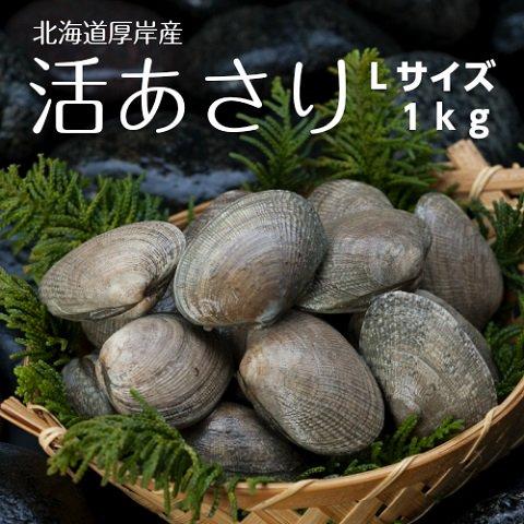【砂抜き済み】 手掘り 島あさり (Lサイズ) 1kg