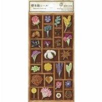 標本箱シール 植物の世界