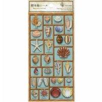標本箱シール 貝の世界