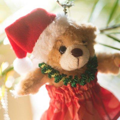 ラニベアーぬいぐるみバッチサイズ クリスマス衣装つき (プリント)