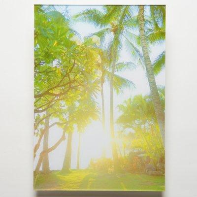 <img class='new_mark_img1' src='https://img.shop-pro.jp/img/new/icons13.gif' style='border:none;display:inline;margin:0px;padding:0px;width:auto;' />【Shoco Hi'ilei】Photo Art フォトアートBefore sunset・アクリル・A3サイズ