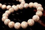 星月菩提樹 11.5mm ブレスレット_BG1770