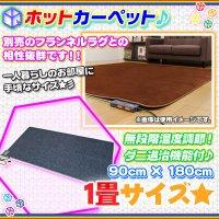 ホットカーペット 1畳タイプ 200W 電気カーペット 無段階温度調節  床暖房 カーペット 一畳 幅180cm 奥行90cm  ダニ退治機能付