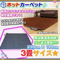 ホットカーペット 3畳タイプ 720W 電気カーペット 無段階温度調節  床暖房 カーペット 三畳 幅235cm 奥行195cm  ダニ退治機能付