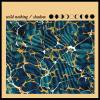 WILD NOTHING / Shadow (7