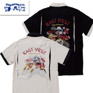 5655 刺繍レーヨンスカシャツ